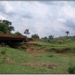 Suzano e as águas do Maranhão o maranhão dos sir ney's O Maranhão dos Sir Ney's riacho barra grande